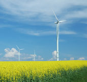 Farm of windturbines close to field Stock Images