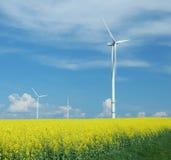 Farm of windturbines close to rape field Stock Images