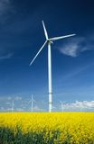 Farm of windturbines close to rape field Stock Photography