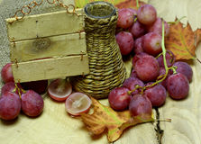 Farm wine wicker bottle and grapes with label Royalty Free Stock Photos