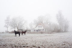 Farm in winter Stock Photography