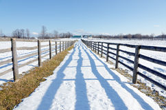 Farm in winter. Farm fence and lines of shadows in winter time Royalty Free Stock Photos