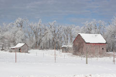 Farm after a winter frost Royalty Free Stock Image