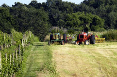 Farm Work. Tractors Ready to take car of the Grape havest Royalty Free Stock Photo
