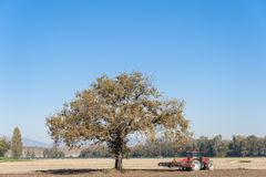 Farm work, harrowing of a field. Agricultural landscape with a tree and tractor plowing the field with harrow Royalty Free Stock Photos