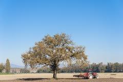 Farm work, harrowing of a field. Royalty Free Stock Photos