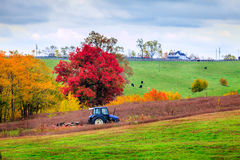 Farm work. Tractor mowing grass on a farm in Central Kentucky Royalty Free Stock Photography