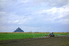Farm Work Tractor Plowing at the Mont Saint Michel Royalty Free Stock Image