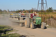 Farm worker driving truck Royalty Free Stock Photos