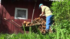 Farm worker man boy unload firewood wood from rusty barrow cart. 4K. Farm worker man boy unload firewood wood from rusty barrow cart near rural wooden house wall stock footage