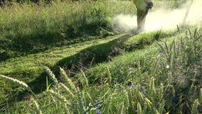 Farm worker near wheat field mowing dewy grass  with lawn mower trimmer. Farm worker near wheat field in summer morning mowing dewy grass  with lawn mower stock footage