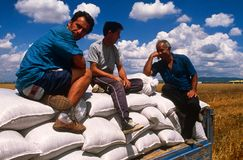 Farm workers in Kosovo. Stock Photography