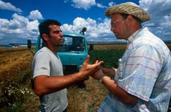 Farm workers in Kosovo. Royalty Free Stock Photos