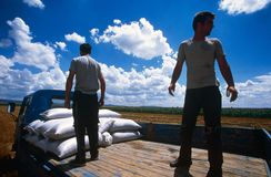 Farm workers in Kosovo. Royalty Free Stock Photo