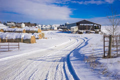 Farm yard in winter Royalty Free Stock Photo