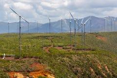 Farma wiatrowa blisko Oundjo, Północna prowincja, Nowy Caledonia, Melanesia, Oceania, Południowy ocean spokojny Siły wiatru rośli zdjęcie royalty free