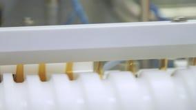 Farmaceutische productielijn bij pharmafabriek Drug productielijn stock videobeelden