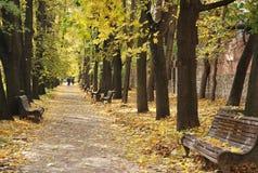 Farmaceutisk kökträdgård, Moskva I botaniska trädgården av Moskvadelstatsuniversitetet Royaltyfri Foto