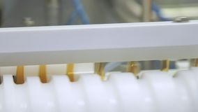 Farmaceutisk produktionslinje på pharmafabriken Drogtillverkningslinje lager videofilmer
