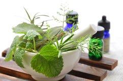 Farmacista naturale Fotografia Stock