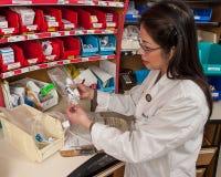 Farmaco d'etichettatura di chemioterapia del farmacista Immagine Stock
