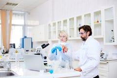 Farmacologen op het werk royalty-vrije stock afbeelding
