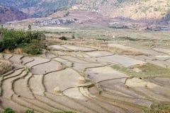 Farmaland a terrazze, Paro, Bhutan Immagine Stock Libera da Diritti
