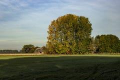 Farmbuilding w polu w Rhoon zdjęcie royalty free