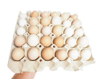Farmed brown and white eggs. In a container, isolated on white Royalty Free Stock Image