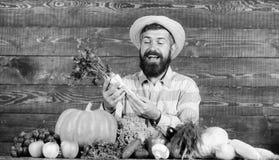 Farmer με τη homegrown συγκομιδών εμφάνιση χωρικών της Farmer αγροτική Εύθυμο γενειοφόρο χρένο λαβής αγροτών ατόμων ξύλινο στοκ φωτογραφίες με δικαίωμα ελεύθερης χρήσης