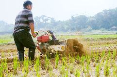 Farmer με έναν μηχανή-καλλιεργητή στοκ εικόνα με δικαίωμα ελεύθερης χρήσης