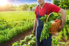 Farmer με τα λαχανικά στο καλάθι Στοκ Εικόνες