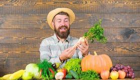 Farmer με τη homegrown συγκομιδών εμφάνιση χωρικών της Farmer αγροτική Εύθυμο γενειοφόρο χρένο λαβής αγροτών ατόμων ξύλινο στοκ εικόνες με δικαίωμα ελεύθερης χρήσης