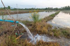 Farmer που αντλεί το νερό στους τομείς στοκ φωτογραφία με δικαίωμα ελεύθερης χρήσης