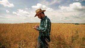 Farmer που γράφει στην ταμπλέτα στη φυτεία canola φιλμ μικρού μήκους