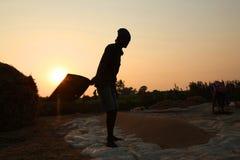 Farmer που λειτουργεί σε έναν τομέα ρυζιού στο ηλιοβασίλεμα Στοκ φωτογραφία με δικαίωμα ελεύθερης χρήσης