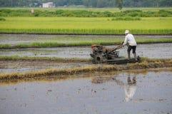 Farmer που λειτουργεί στο ρύζι τομέων ορυζώνα Στοκ Φωτογραφία