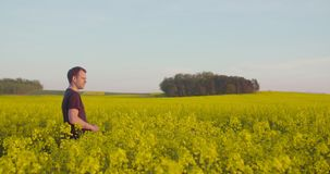 Farmer που εξετάζει το άνθος βιασμών στον τομέα απόθεμα βίντεο