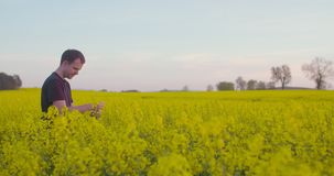 Farmer που εξετάζει το άνθος βιασμών στον τομέα φιλμ μικρού μήκους