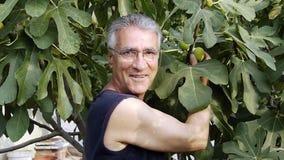 Farmer που επιλέγει τα οργανικά φρούτα απόθεμα βίντεο