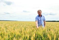 Farmer που ελέγχει τον τομέα σόγιας Η μοναδική τεχνολογία της ανάπτυξης Στοκ Εικόνα