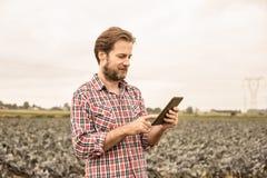 Farmer που λειτουργεί στη χρησιμοποίηση της ταμπλέτας μπροστά από τον τομέα λάχανων Στοκ εικόνα με δικαίωμα ελεύθερης χρήσης