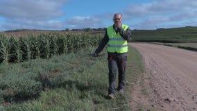 Farmer που μιλά στο έξυπνο τηλέφωνο κοντά στον τομέα καλαμποκιού απόθεμα βίντεο