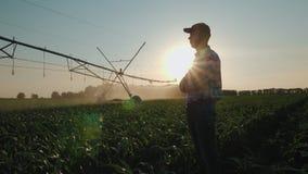 Farmer που προσέχει cornfield άρδευσης φιλμ μικρού μήκους