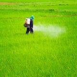Farmer που ψεκάζει το φυτοφάρμακο Στοκ φωτογραφία με δικαίωμα ελεύθερης χρήσης