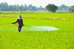 Farmer που ψεκάζει το φυτοφάρμακο στοκ φωτογραφία