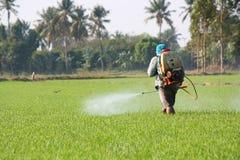 Farmer που ψεκάζει το φυτοφάρμακο στοκ εικόνα με δικαίωμα ελεύθερης χρήσης
