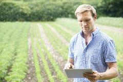 Farmer στο οργανικό αγρόκτημα που χρησιμοποιεί την ψηφιακή ταμπλέτα Στοκ φωτογραφία με δικαίωμα ελεύθερης χρήσης