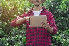 Farmer χρησιμοποιώντας τον ψηφιακό υπολογιστή ταμπλετών στην καλλιεργημένη φυτεία τομέων καφέ Στοκ Φωτογραφία