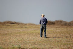 Farmer. In the field Royalty Free Stock Image
